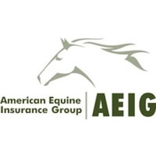 American Equine
